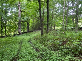 Recreational Retreat - Woods & Private Meadow