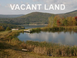 Catskills Land for Sale